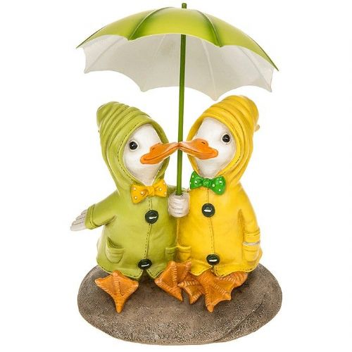Puddle Duck Couple on Rock